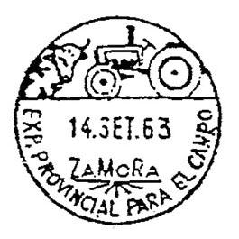 zamora0043.JPG